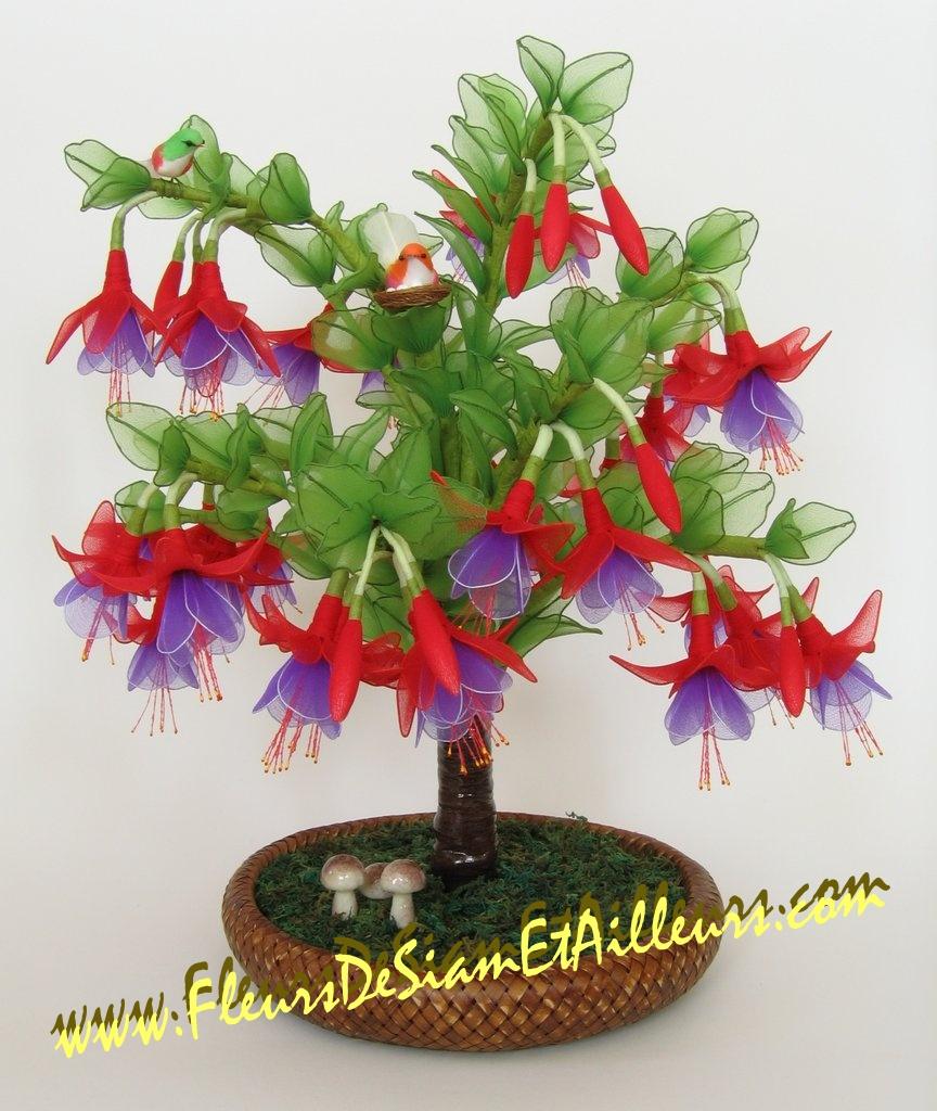 Grand Fuchsia